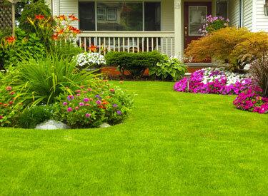 Bahçe ve Peyzaj